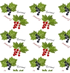 Currants seamless pattern vector image