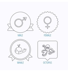 Male female and octopus icons vector image