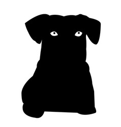pussy dog silhouette icon eps vector image