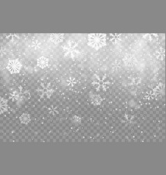 realistic snow flakes background isolated backdrop vector image