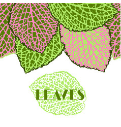 Seamless border with decorative leaves natural vector