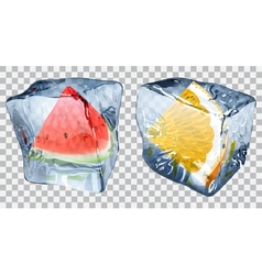 Transparent ice cubes with watermelon and orange vector image