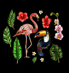 flamingo toucan and flowers embroidery vector image vector image