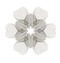 Geometric Ornament Guilloche Rosette vector