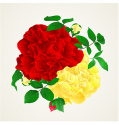 Red and yellow rose with buds and leaves vintage vector