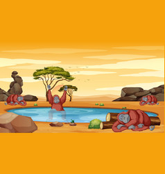 Scene with chimpanzee in pond vector
