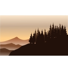 Silhouette of spruce on the hills vector image