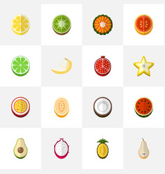 set of 16 editable berry icons flat style vector image