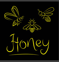 bee yellow on a black background vector image