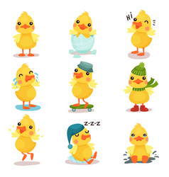 Cute little yellow duck chick characters set vector