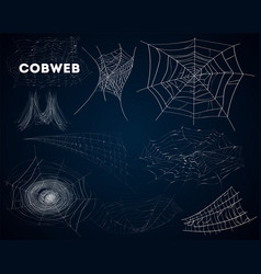 Spider cobwebs various forms isolated set vector