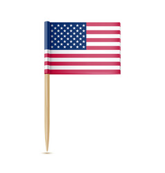 usa flag toothpick isolated on white background vector image