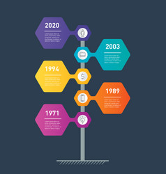 Vertical timeline info graphics the development vector