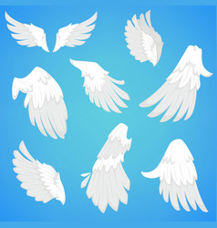 Wings white bird feather icons vector
