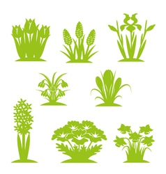 flowers green vector image vector image