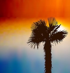 Tropical background with palm tree at sunset vector image