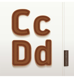 Alphabet Leather Skin Texture vector image