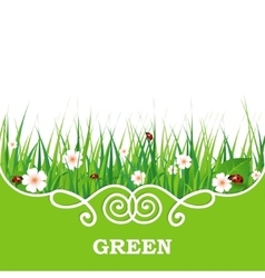 banner with green grass vector image