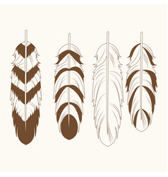 Collection differents feathers free spirit vector