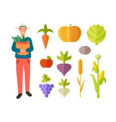 Farming man with basket fruits vegetables vector