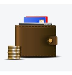The wallet vector