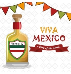 Viva mexico poster celebration vector
