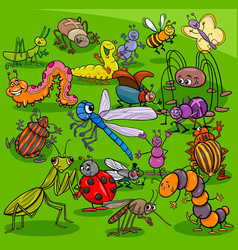 cartoon insects animal characters group vector image