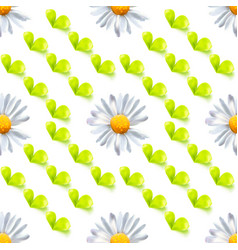 seamless pattern with leaves and chamomile vector image