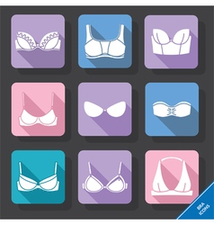 Bra and bustiers vector image