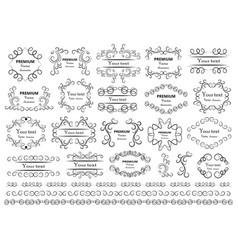 Calligraphic design elements decorative swirls vector