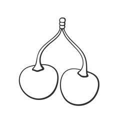 doodle twin cherries with stem vector image