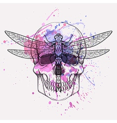 Grunge of human skull and dragonfly with wat vector
