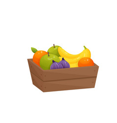Juicy colorful fruit in wooden box isolated over vector