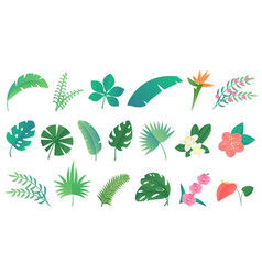 set cartoon tropical rainforest leaves vector image