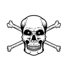 Skull with crossbones isolated on white vector