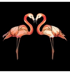 love pink flamingos vector image