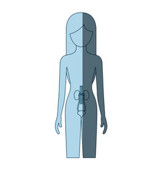 Blue color shading silhouette female person with vector