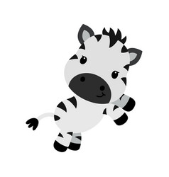 Cartoon character of little funny zebra vector