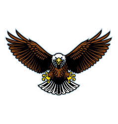 bald eagle wings open vector image