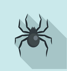 Black widow spider icon flat style vector