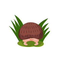 cute hedgehog looking for something in the grass vector image