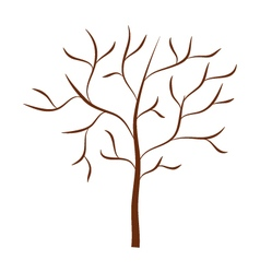 dry tree on white background vector image