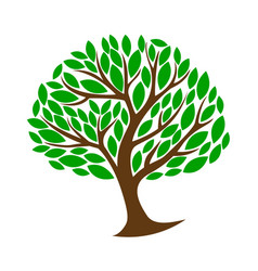 green color tree template symbol growth vector image