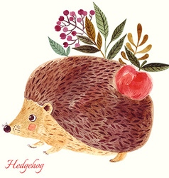 Hedgehog in watercolor technique vector