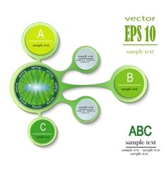 Infographics spring ABC vector
