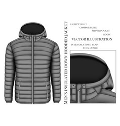 Mens hooded insulated down vector