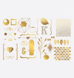 Set of gold elements for design vector