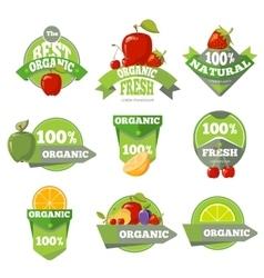 Set of organic natural fruits labels vector image vector image