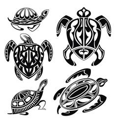 Decorative turtles vector image vector image