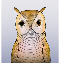 A drawing of an owl vector